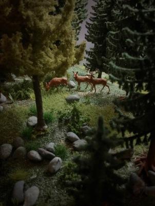 Auf einer dicht bewaldeten Fläche von 3 Hektar kann man hier auch Rot- und Schwarzwild erleben