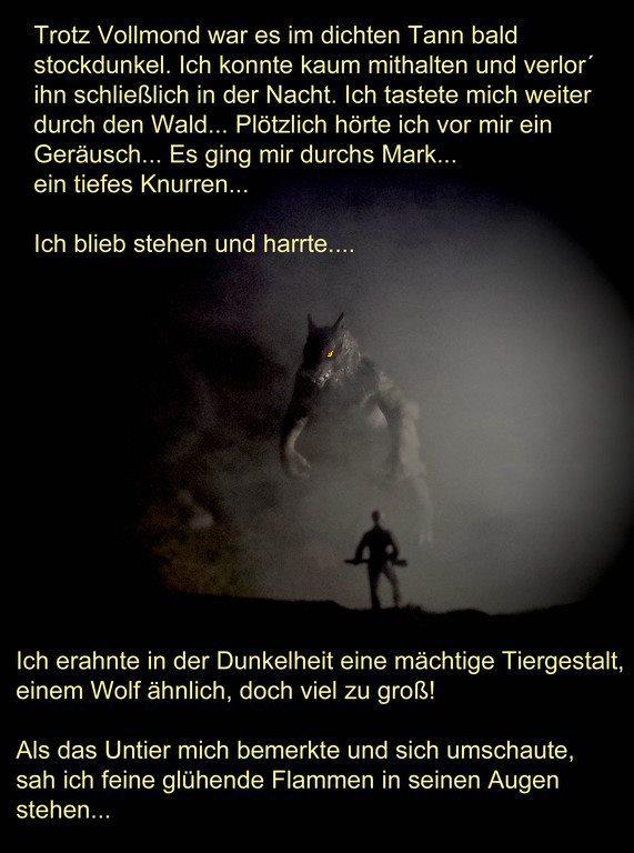 Der Jagdbericht aus dem Tagebuch von Karl Napf 2