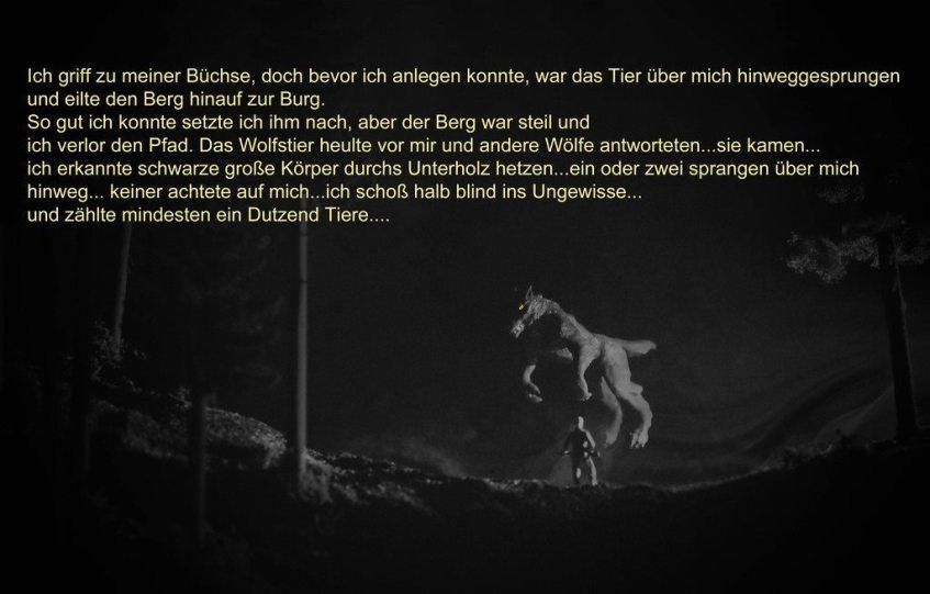 Der Jagdbericht aus dem Tagebuch von Karl Napf 3